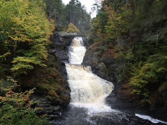 Harrington House: Raymondskill Falls the First Drop