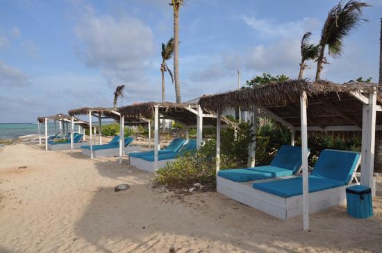 Sorobon Beach Wellness Windsurf Resort The Lounge Chairs