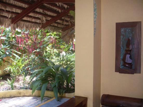Hotel Guarana: our garden