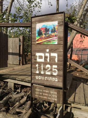 Rom 1125 : The sign
