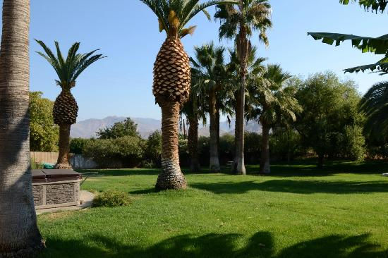 Lemon Cove, Californien: Il bellissimo giardino