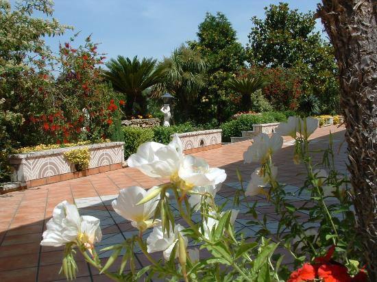 terrazzo fiorito - Foto di Villa San Carlo, Sessa Aurunca - TripAdvisor