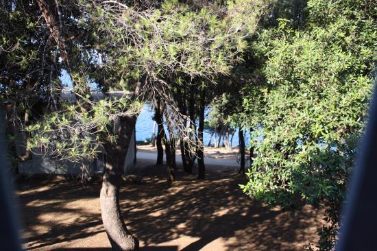 Verudela Beach & Villa Resort: vista dall'appartamento