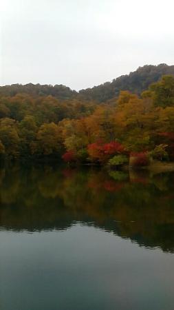 Kamaike Pond