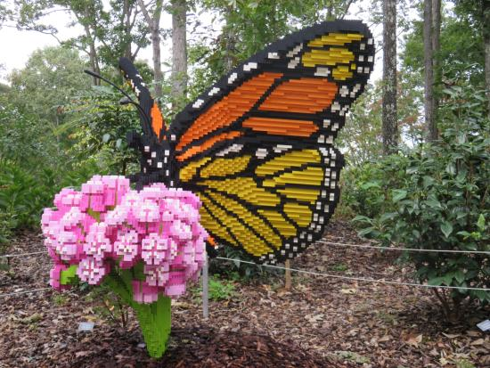 Lego Monarch Picture Of Atlanta Botanical Garden Gainesville Tripadvisor
