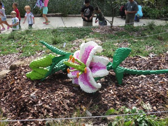 Atlanta Botanical Garden: Lego Lily