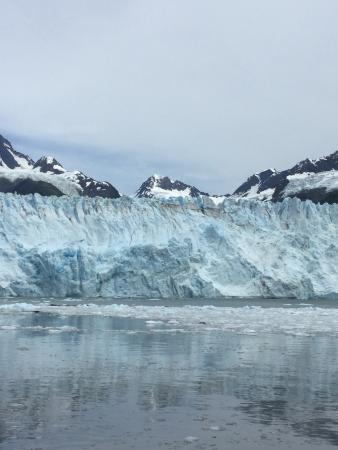 Stan Stephens Glacier & Wildlife Cruises: Glaciar Meares