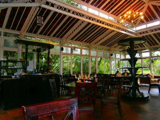 Inside the crystal coffee house