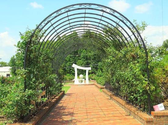 Wilson Rose Garden