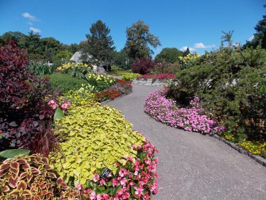 Minnesota Landscape Arboretum: Annual garden