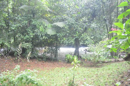 La Carolina Lodge: Cabaña frente al río