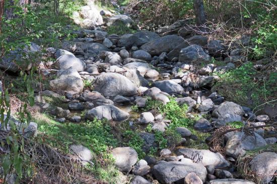 Idyllwild, Kalifornia: Quiet Creek Inn: Strawberry Creek near cabins