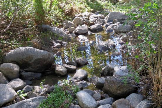 Idyllwild, Kalifornia: Quiet Creek Inn: Strawberry Creek easy walk behind cabin