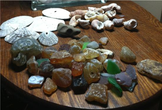 Damon Point: a sample of the collection of shells, agates and beach glass