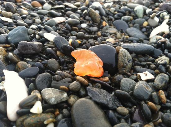 a carnelian agates found on Damon Point beach