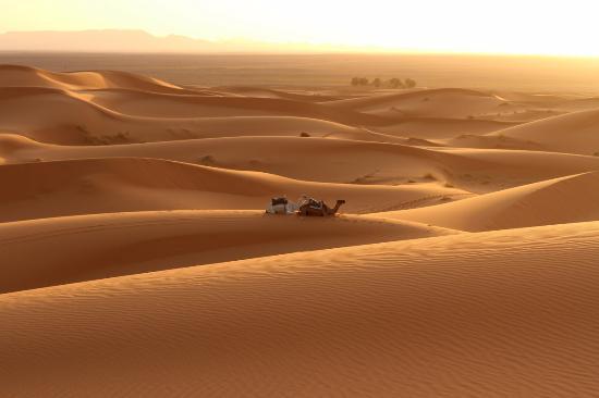 Auberge Dunes D'or: Deserto