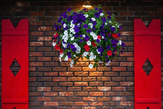 Bavarian Inn: Hanging Flowers