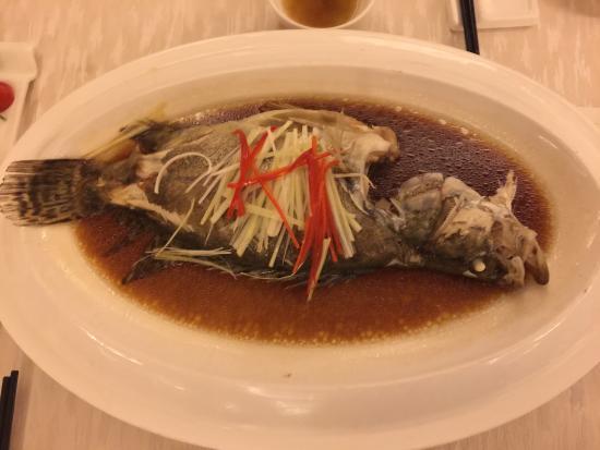 Xinji, China: Nice hotel with good food