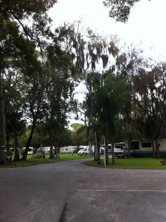 Nova Family Campground: View of campers