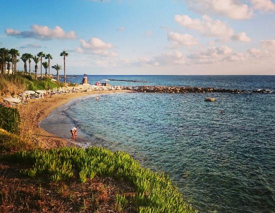 Alexander The Great Beach Hotel Paphos Tripadvisor