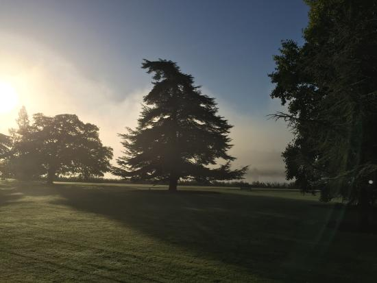 Henley Business School: Fog on the Thames