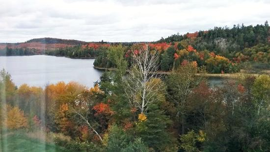 Elliot Lake, Kanada: Overlooking Horne Lake - October 2015