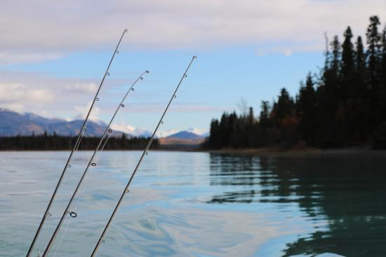 Chugach Backcountry Fishing - Day Trips: Gorgeous River