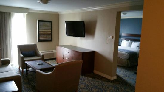 Bonsai Deluxe Suite Picture Of Doubletree By Hilton Hotel Tampa Airport Westshore Tripadvisor