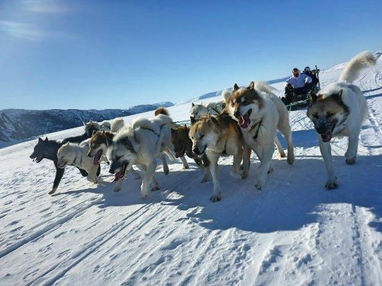 IPERAATAQ Expeditions