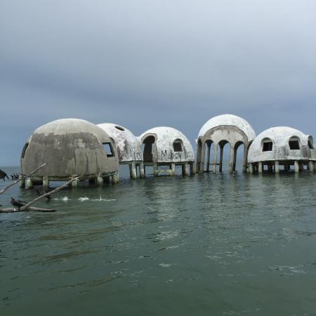 Ten Thousand Islands Florida Boat Tour