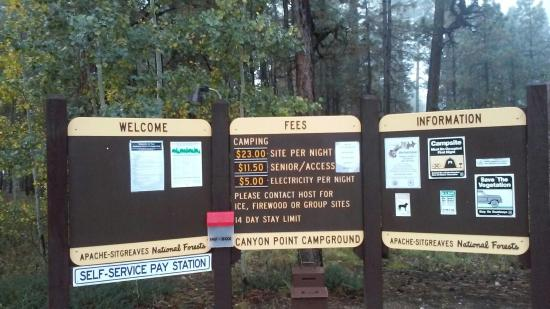 Forest Lakes, AZ: Canyon Point campground