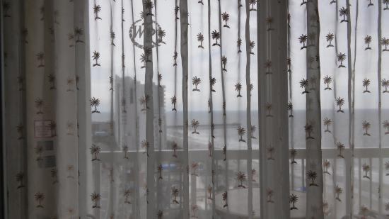 Curtains Ideas birch tree curtains : Net curtains have palmetto tree decorations. - Picture of Westgate ...