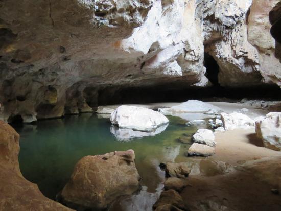 Kimberley Region, Αυστραλία: Tunnel creek entrance Pool