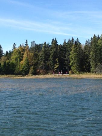 Coborn S Lake Itasca Tours Lake Itasca State Park