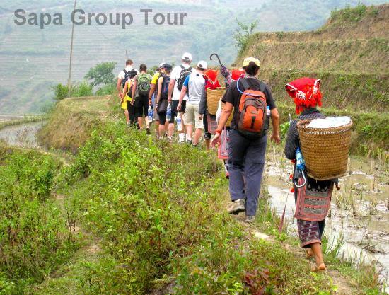 LocationPhotoDirectLink g d i Trekking Sapa Sapa Lao Cai Province.