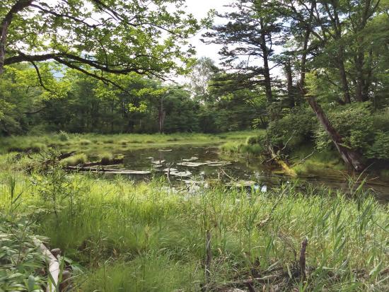 泉門池, 水が少ない池