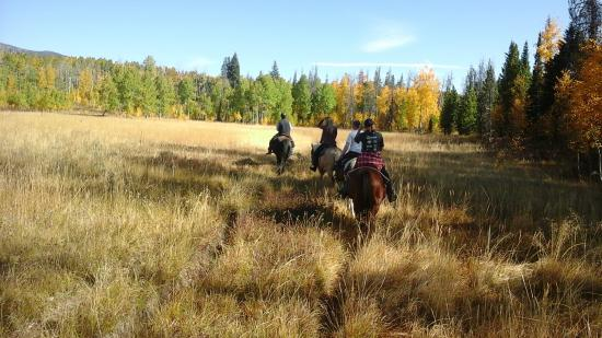 Clark, CO: Shorter Round Up 2015 on the trails of the Elk River Guest Ranch & loving it!!!