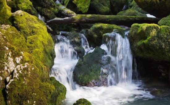 Samegrelo-Zemo Svaneti Region, Γεωργία: Водопад Инцира