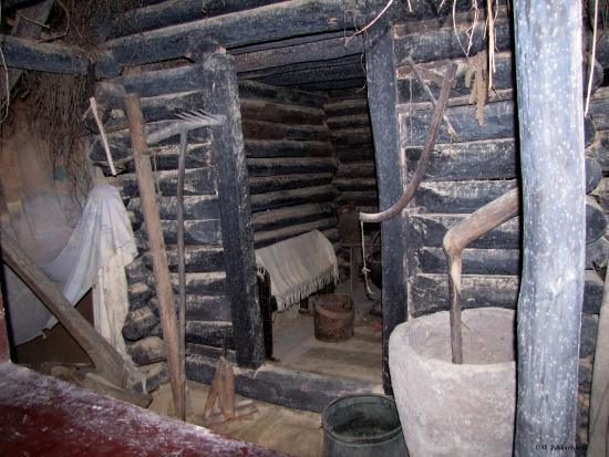 Poti, Georgia: Музей колхидской культуры в Поти
