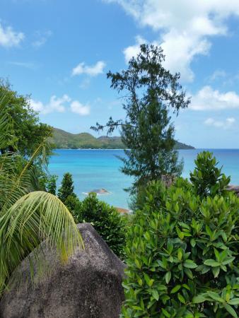 Jardin Marron: чудо-остров