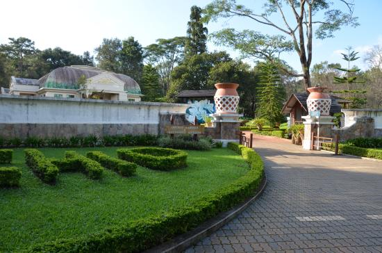 Good Maymyo Botanical Garden (National Kandawgyi Park): Orchid Garden And  Butterfly Museum
