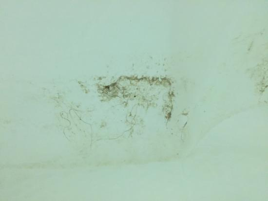 Finger Lakes Hotel: Mould on the shower curtain and tiles falling off the wall.