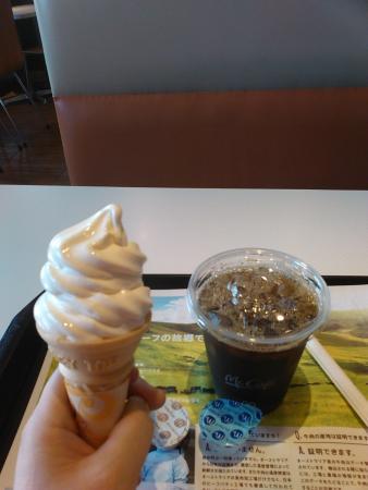 McDonald's Shibata Route 7