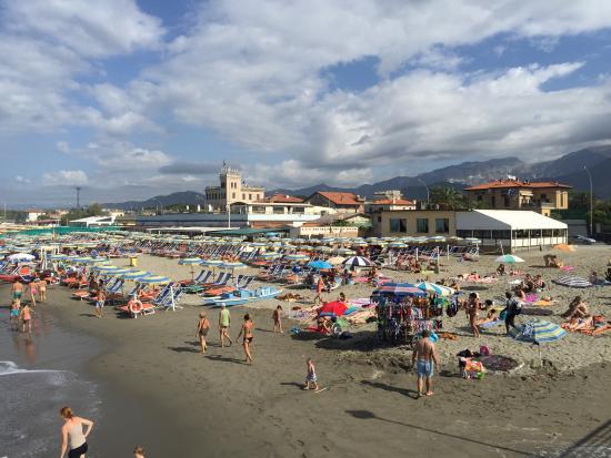 Hotel italia updated 2017 reviews price comparison marina di massa italy tripadvisor - Bagno milano marina di massa ...