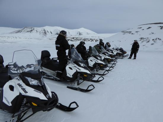 Arctic Adventures - Day Trips