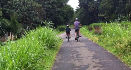 Kerala Bicycle Trips - Cochin Day Tours