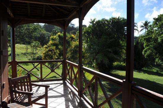 Le Jardin Malanga: Notre terrasse