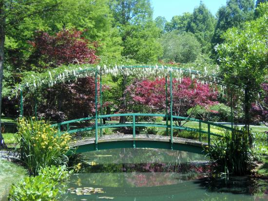 Gibbs Gardens Waterlilly pond - Picture of Gibbs Gardens, Ball ...