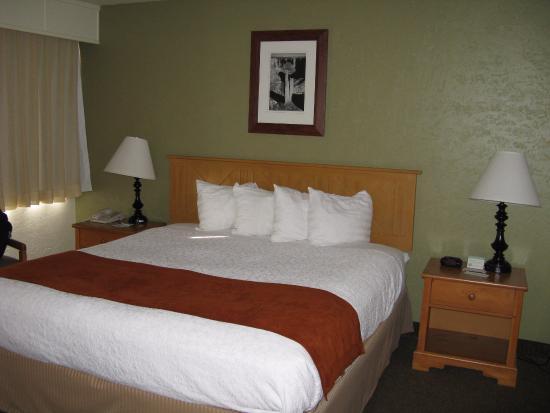 BEST WESTERN Pony Soldier Inn & Suites: bedroom