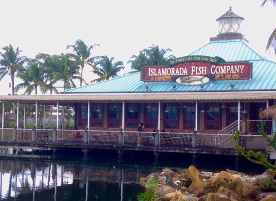 Fresh seafood picture of islamorada fish company dania for The fresh fish company